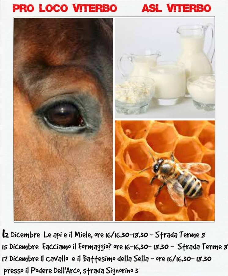Animali e natura, tre laboratori didattico creativi gratuiti per bambini