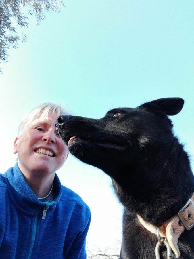 Argo, da cane abbandonato a mascotte delle Guardie Ecozoofile di Montefiascone
